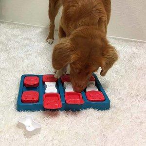 Nina Ottosson Hondenpuzzel Dog Brick