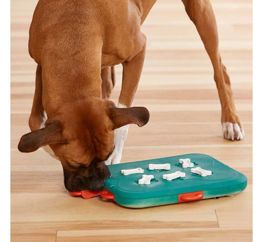 Dog Puzzle Casino