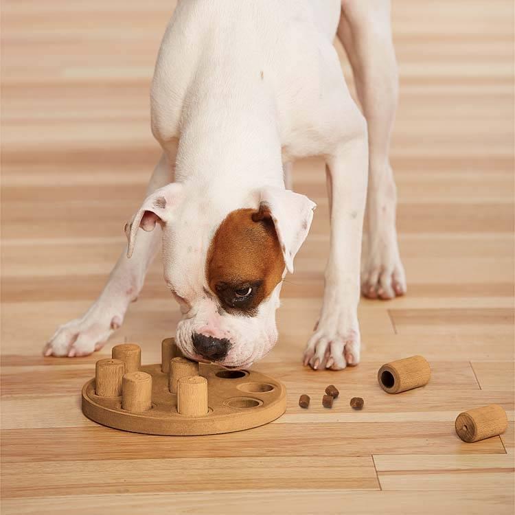Hondenpuzzel Dog Smart Composiet