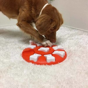 Nina Ottosson Dog Puzzle Dog Smart
