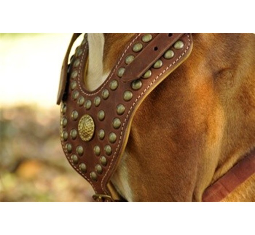 Dog Harness The Royal Stud