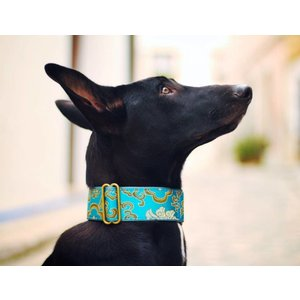 Barcelona Dogs Martingale Dog Collar Brocade Green