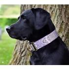 Barcelona Dogs Martingale Dog Collar Brocade Lavender