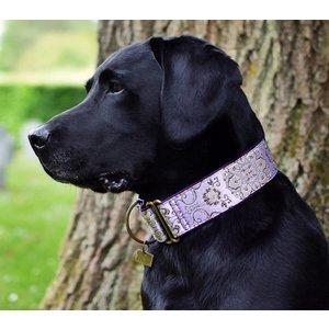 Barcelona Dogs Martingale Dog Collar Brocade d