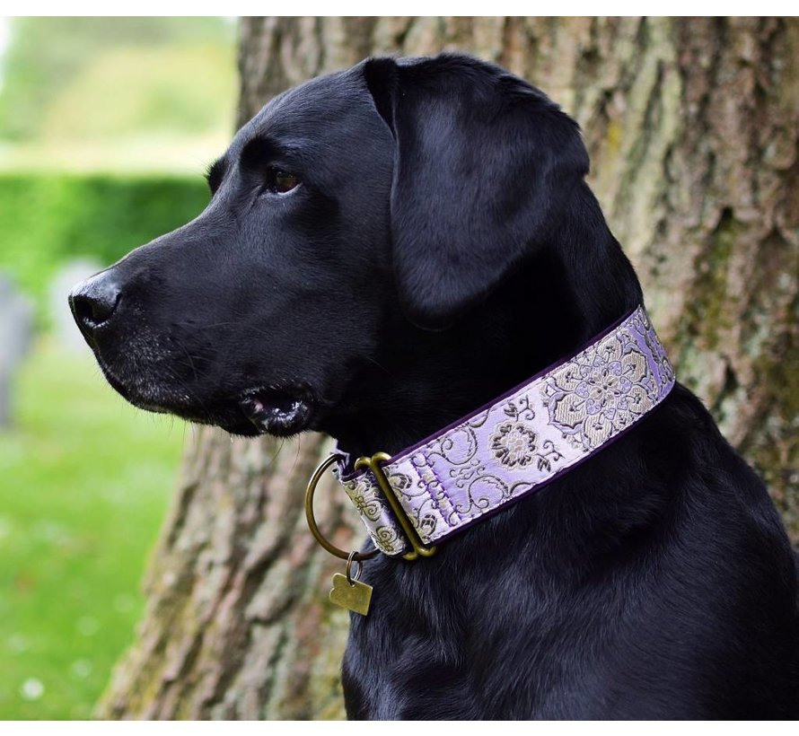 Martingale Dog Collar Brocade d