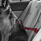 Kurgo Safety belt Swivel Tether