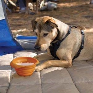 Kurgo Collapsible Drinking Bowl Collaps-a-Bowl Orange