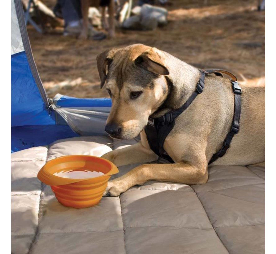 Collapsible Drinking Bowl Collaps-a-Bowl Orange