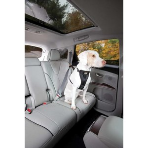 Kurgo Reinforced Dog Harness for the car Black