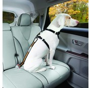 Kurgo Safety belt for seat belt