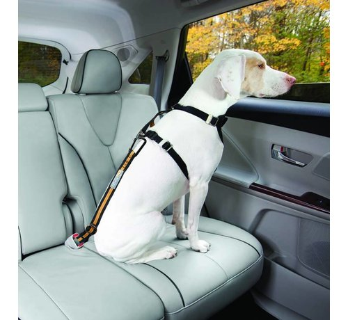 Kurgo Safety belt for seat belt