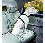 Veiligheidsriem voor autogordel