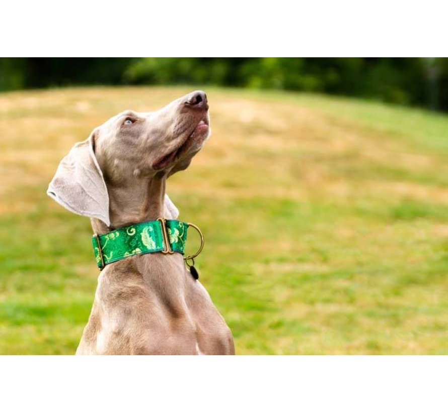 Martingale Hondenhalsband Green
