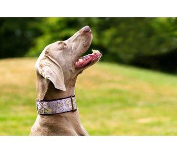 Barcelona Dogs Martingale Hondenhalsband Lavendel