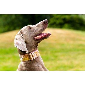 Barcelona Dogs Martingale Dog Collar Pink