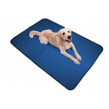 cooling products for dogs