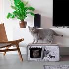 District70 Cat Scratcher Sardine White