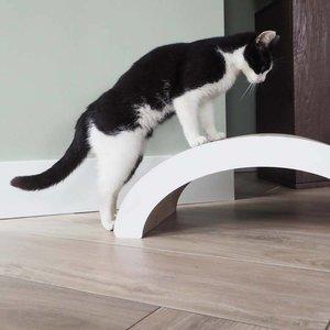 District70 Cat Scratcher Arch