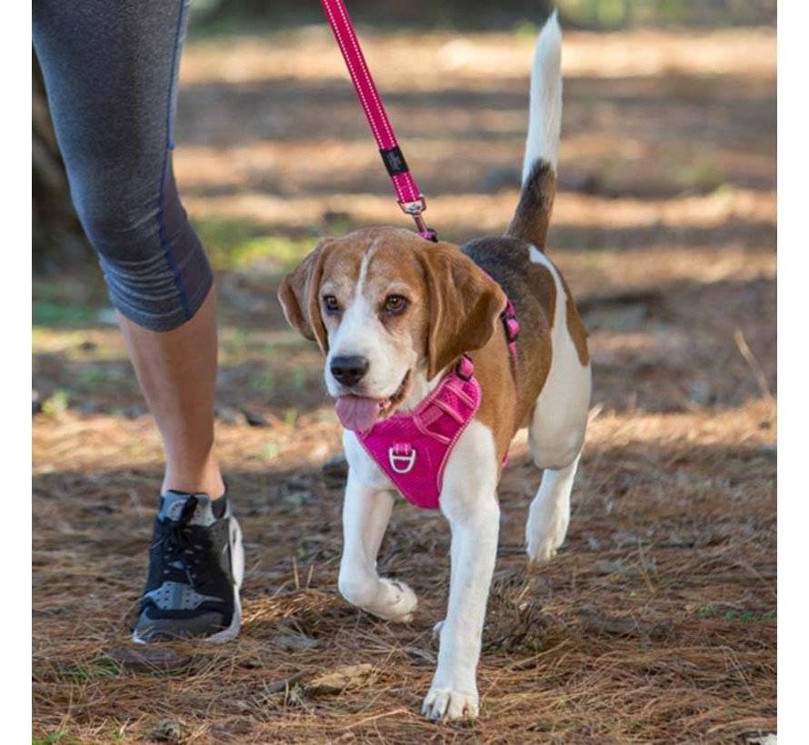 Dog Harness Explore Pink