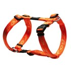 Rogz Dog Harness Alpinist Orange