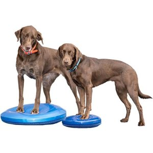 FitPAWS Balance Disk Blue
