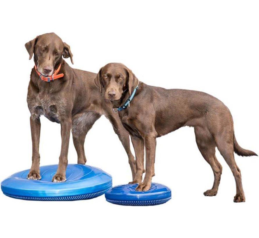 Balance Disk Blue