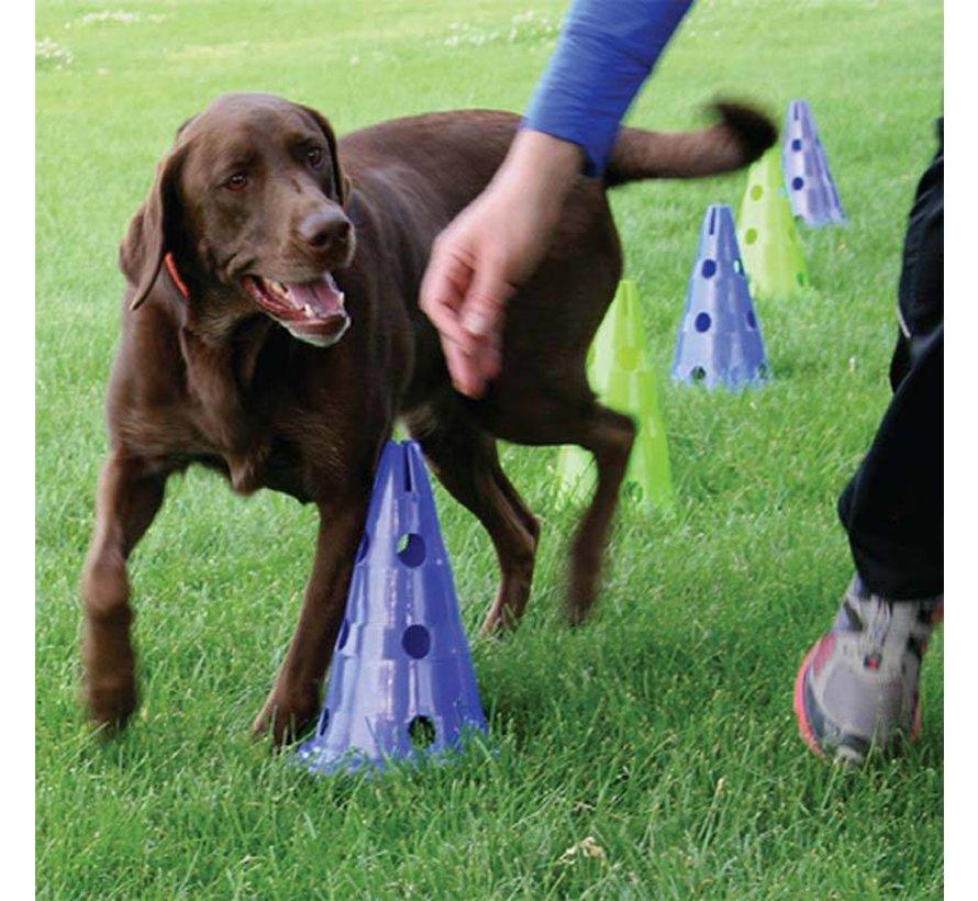 Canine Gym Dog Agility Kit