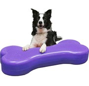 FitPAWS Giant K9FITbone Violet