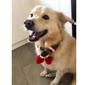Wagytail Dog Scarf Christmas