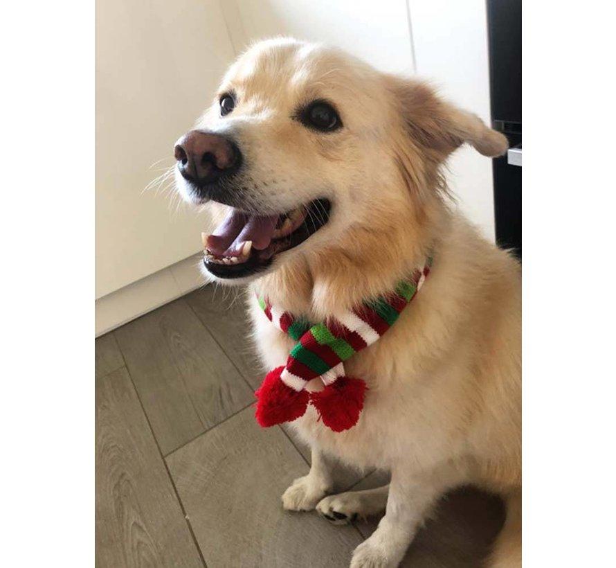 Dog Scarf Christmas
