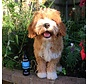 Dry Dog Shampoo Mucky Pup