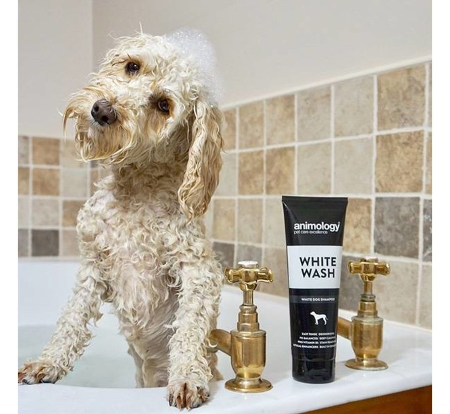 Dog Shampoo White Wash