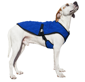 Aqua Coolkeeper Cooling Pet Jacket