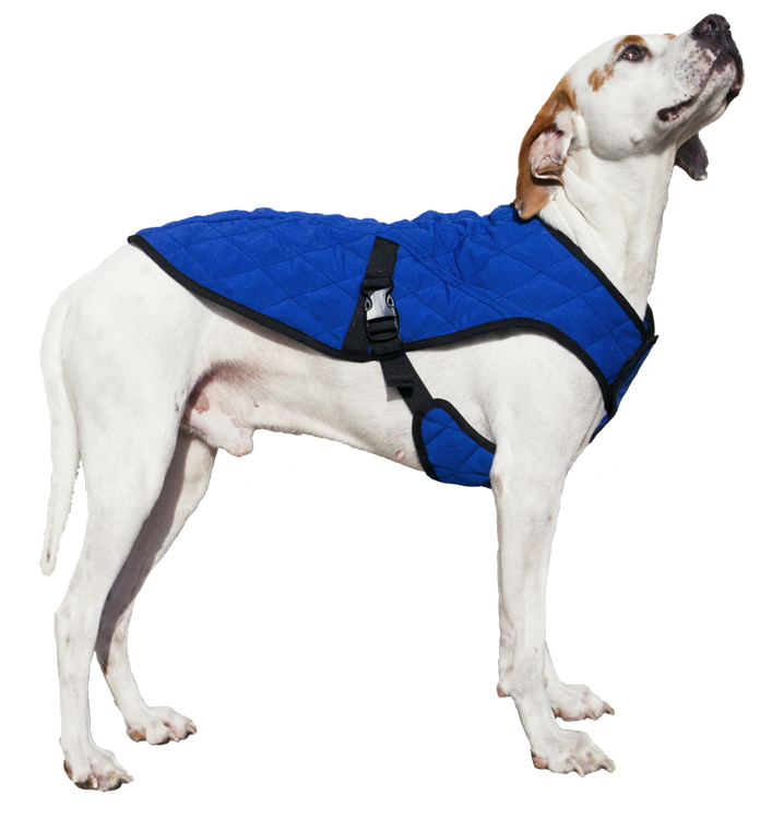 Cooling Pet Jacket