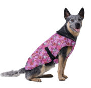 Aqua Coolkeeper Cooling Pet Jacket Roses