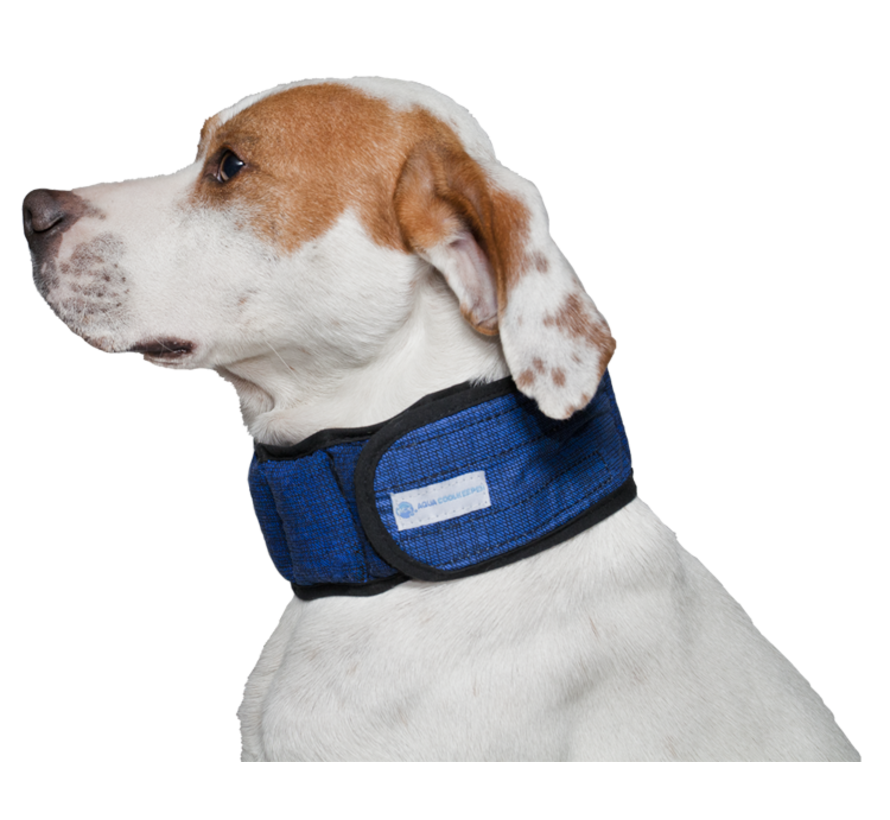 Cooling Collar Pacific Blue