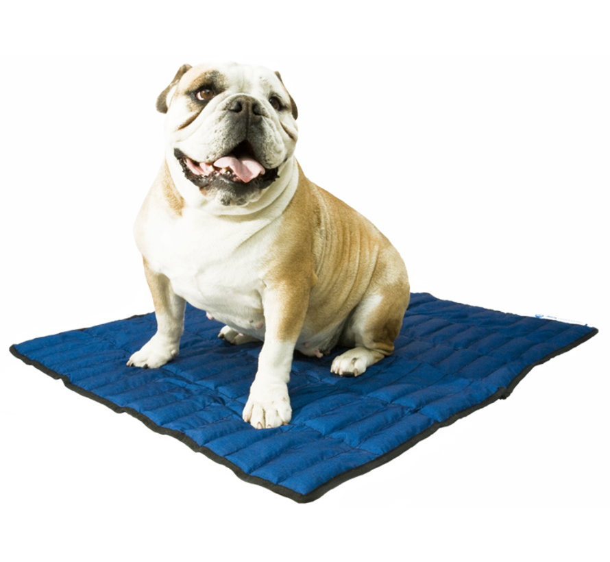 Cooling Mat Pacific Blue