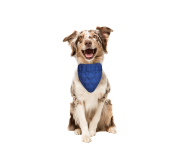 Aqua Coolkeeper Cooling Pet Bandana Pacific Blue