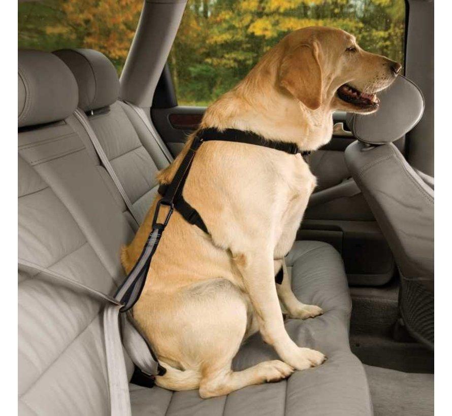 Dog Seat Belt Loop