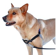 Petsafe Anti-Trek hondentuig Easy Walk ® Zwart