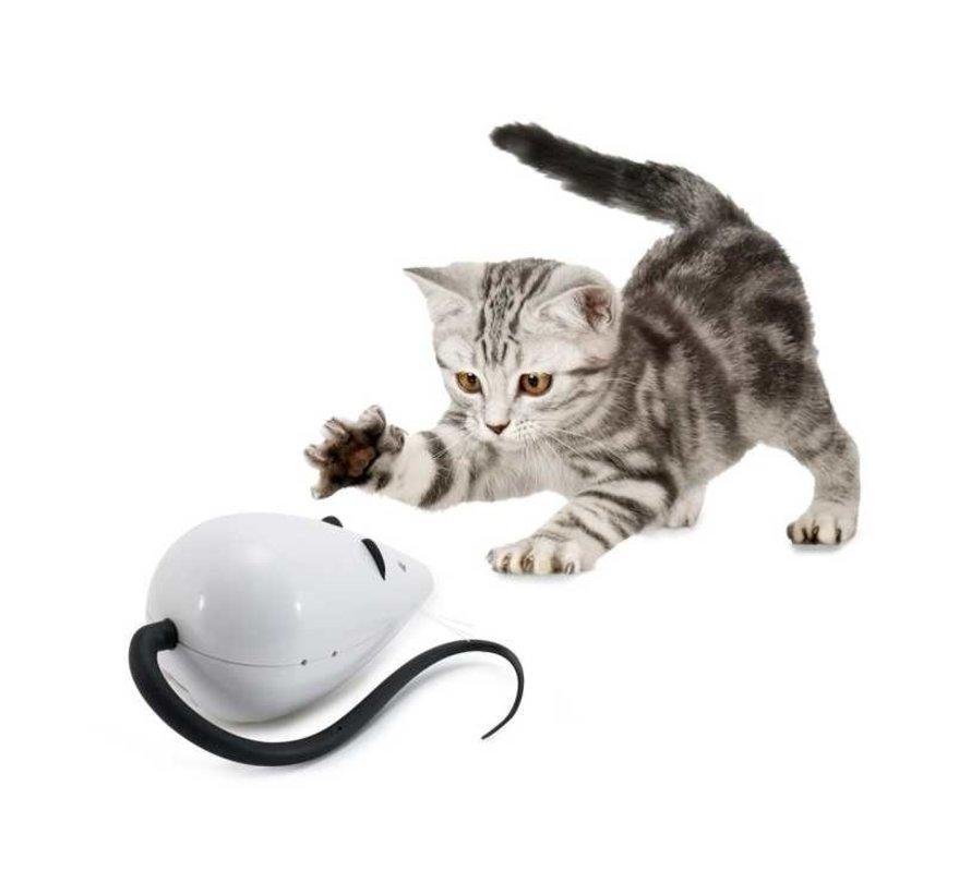 Kattenspeelgoed Rolocat