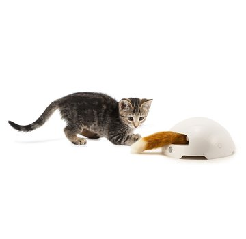 FroliCat Kattenspeelgoed Fox Den Toy