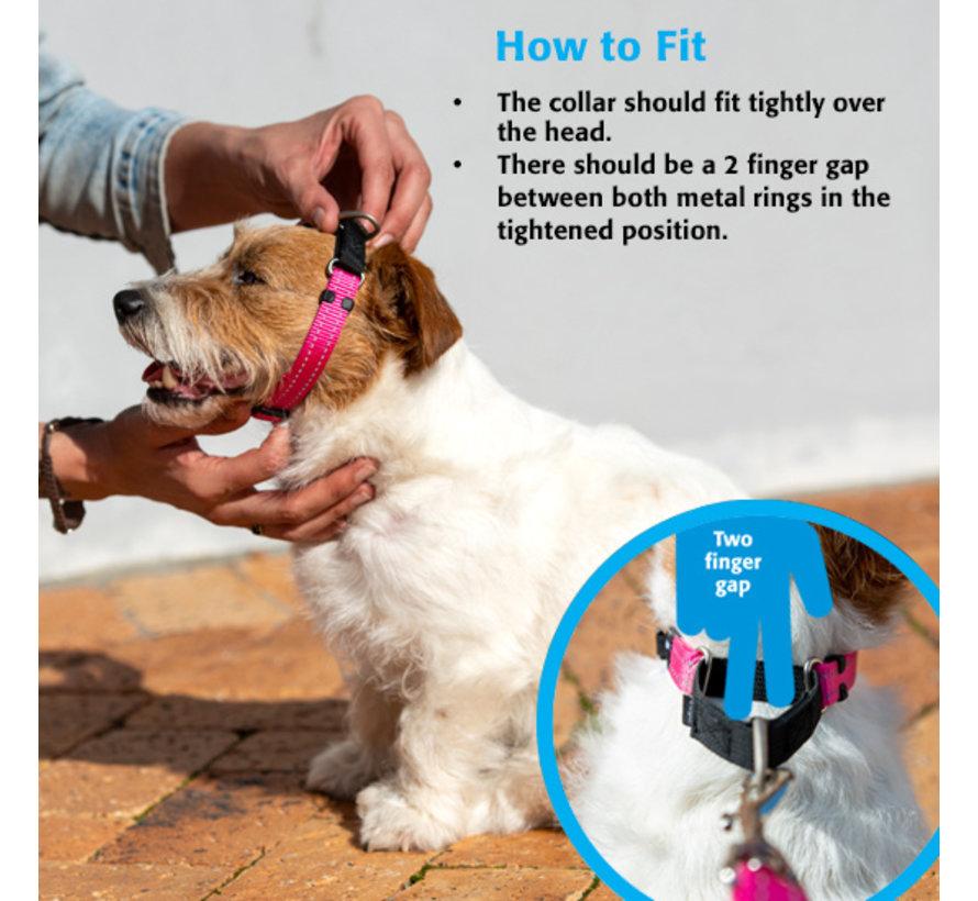 Dog Collar Utility Control Yellow