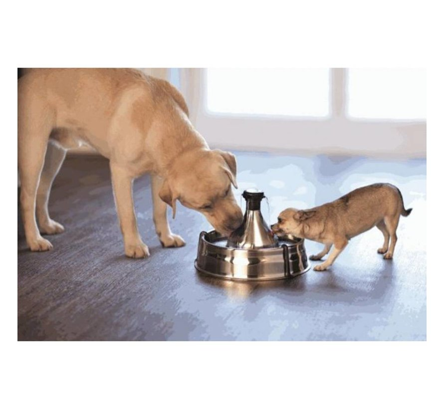 Drinking Fountain 360 stainless steel