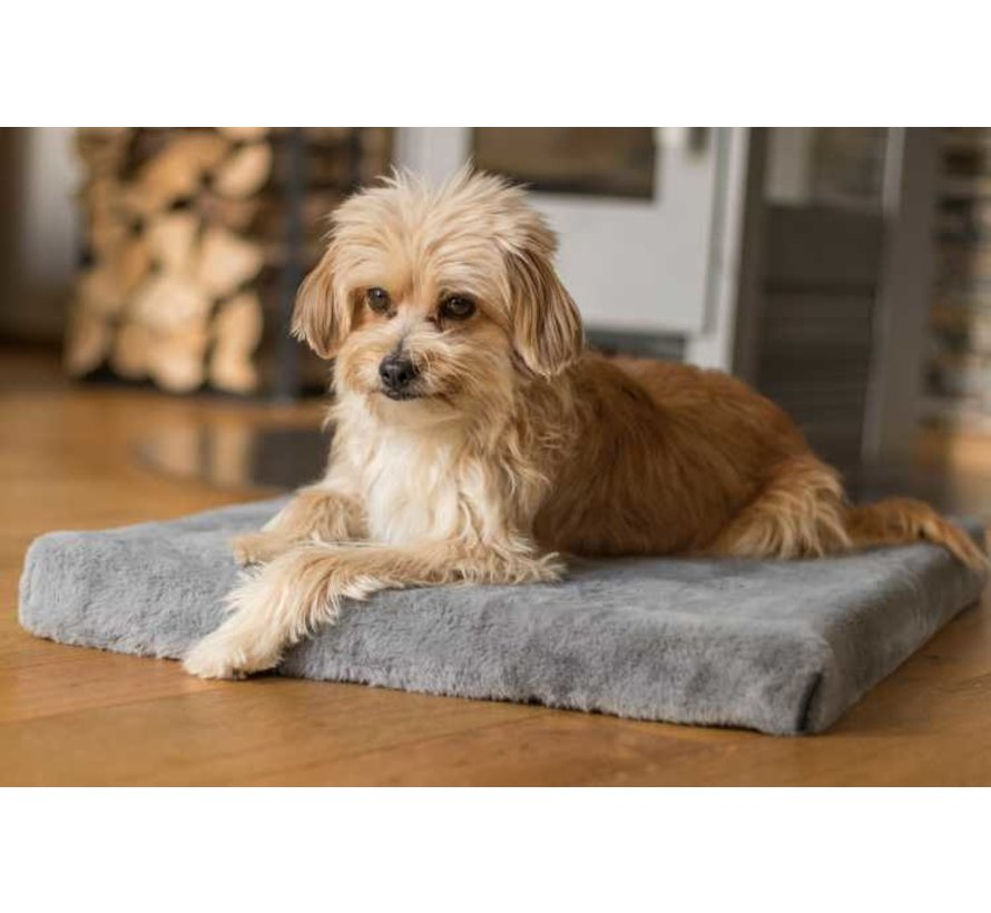 Hondenkussen VitaMeDog Grijs