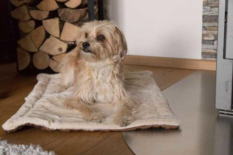 Hondendeken Relax