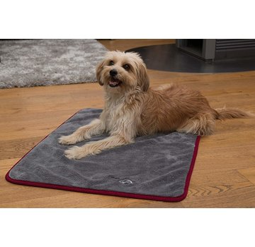 TrendPet Dog Dry Blanket Ruby