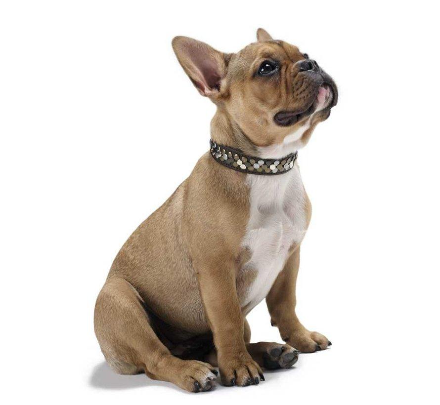 Dog Collar Arizona Brown