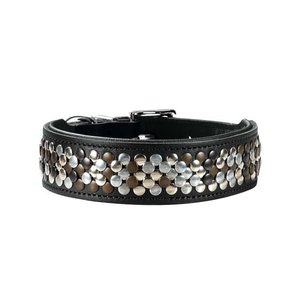 Hunter Dog Collar Arizona Black