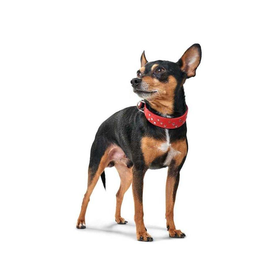 Hondenhalsband Capri Mini Rood
